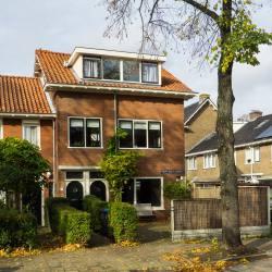 Hooft Graaflandstraat 217 bis